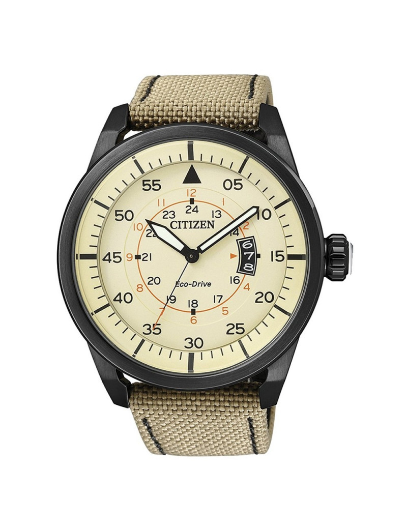 Reloj Caballero Citizen AW1365-19P Aviador Black